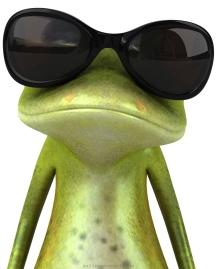 Donkere brillen zijn hip in 2013